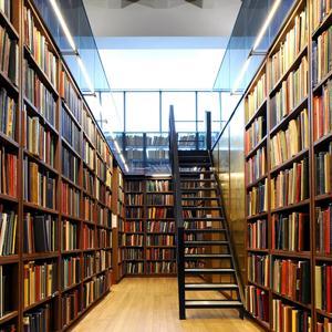 Библиотеки Чишмов
