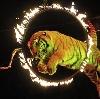 Цирки в Чишмах